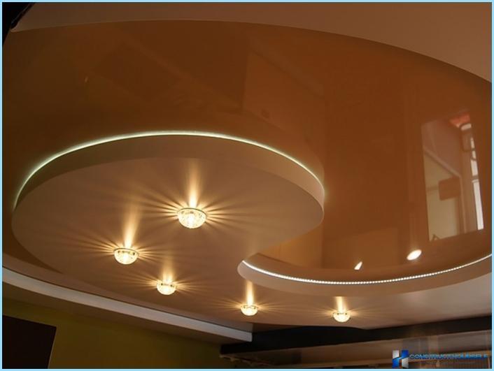 Уход в домашних условиях за зигокактусом фото и условия