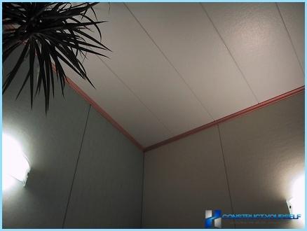 Quali sono i pannelli del soffitto