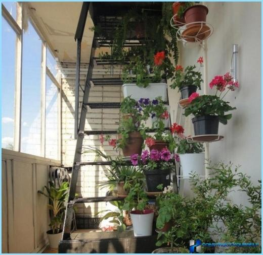 Beautiful fire escape on the balcony
