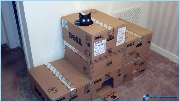 Домики для кошек из коробок фото
