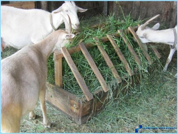 Как сделать кормушку для овец под сено видео