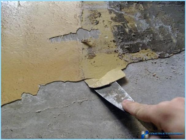 Pittura decorativa per le pareti con le mani + foto, il video