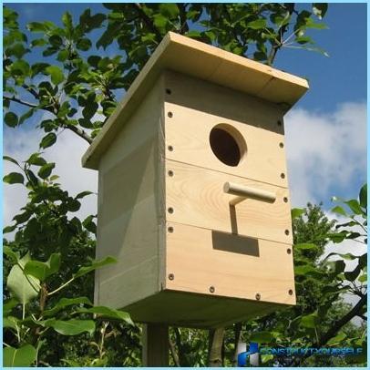 Padarīt birdhouse savām rokām saskaņā ar rasējumiem, fotogrāfijas un video
