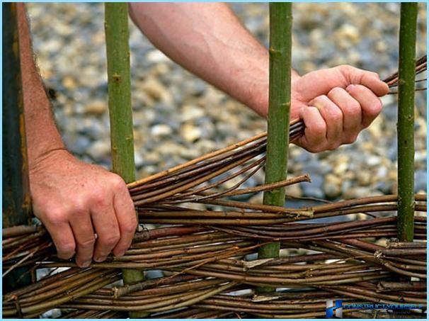 Как плетеную изгородь своими руками