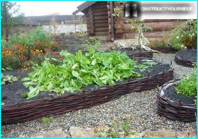 Unusual setting for vegetable beds