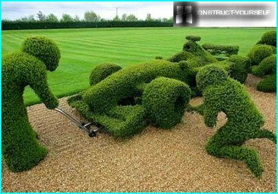 Topiary Frame Formula 1
