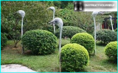 Topiary Frame ostriches