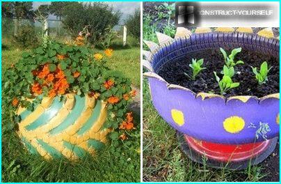 The combination of colors in the design of the flowerpot