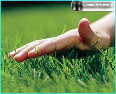 викошування газону