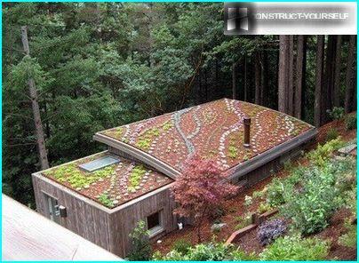 Опукла і плоска даху