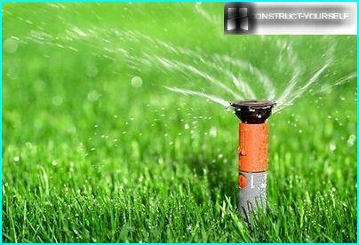 Gentle watering lawn