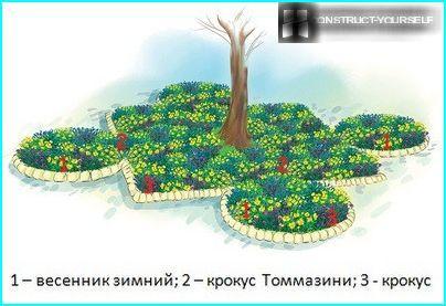 "Flower Garden ""solar paint"""