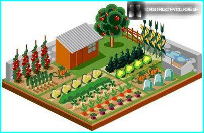 Combine vegetable beds