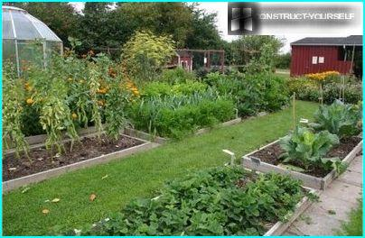 Circular striping vegetable beds