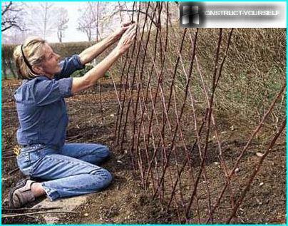 Процес спорудження шпалери із прутів