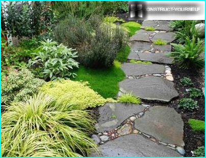"""Zaļā jumta dārzs mājās: noteikumi """"zāle jumta segums"""" ierīce"""