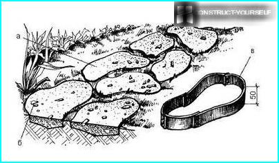 Топ-8 кращих грунтопокривних багаторічних рослин для оформлення саду