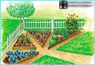 Рисунок своими руками в огороде