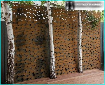 Panels of birches
