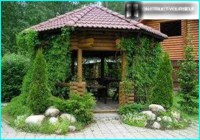 Gazebo in plants