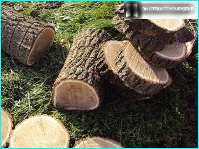 Технологія догляду за газоном: огляд 6-ти важливих процедур «трав'яний» турботи
