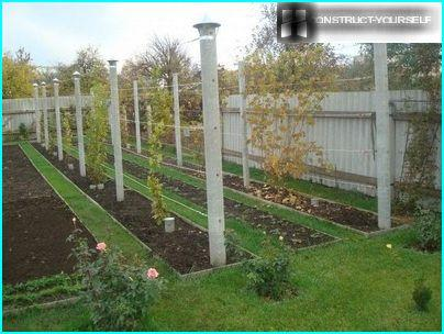 Monoplanar trellis with concrete pillars