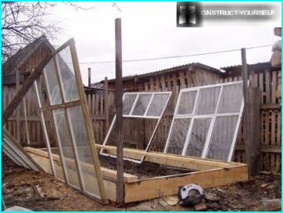 Vertical Stand for greenhouses
