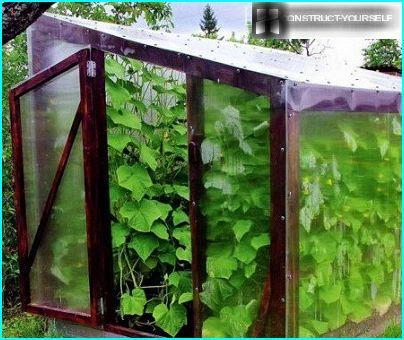 skärm växthus