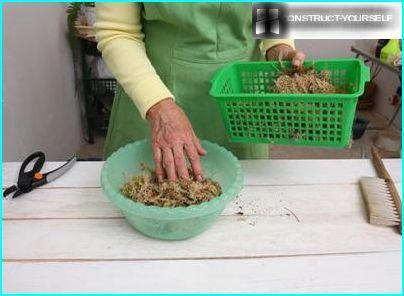 Weichen Sie das Moos