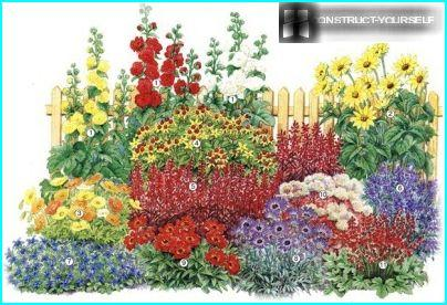 Driving multicolor flower bed with red lobelia