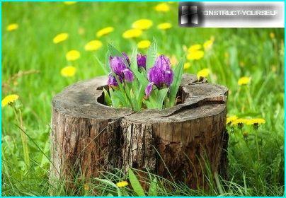 Ursprüngliche Blumenbeet