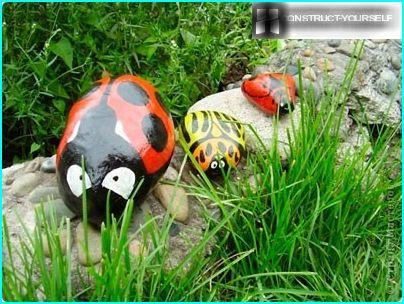 Steine, Insekten