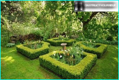 Scenic Area in the garden