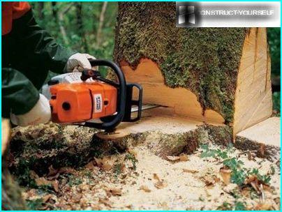 The professional model of chain saws