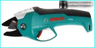 Bosch CISO