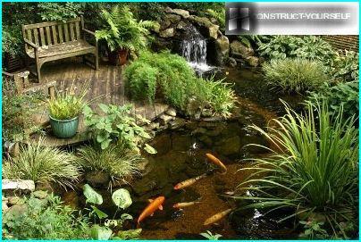 Net pond