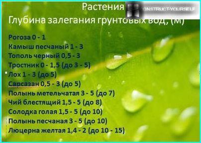 Рослини-індикатори