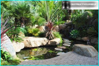 Landscape pond with boulders