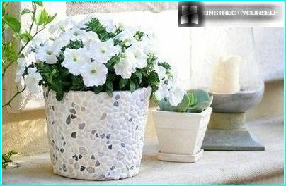 Variants of decoration flowerpot