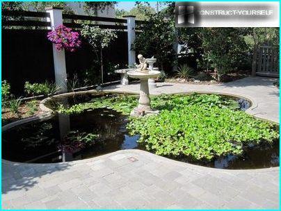 Teich im Garten des regulären