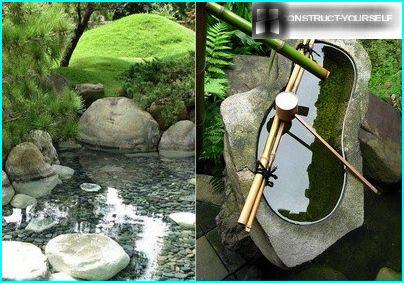 Pond in the Japanese style