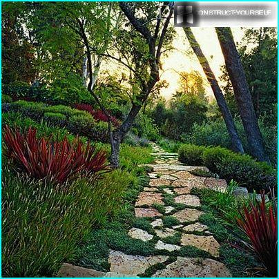 Decorative garden paths