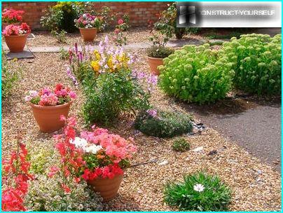 Šis dārzs ir dekorēts ar augiem un keramikas podi