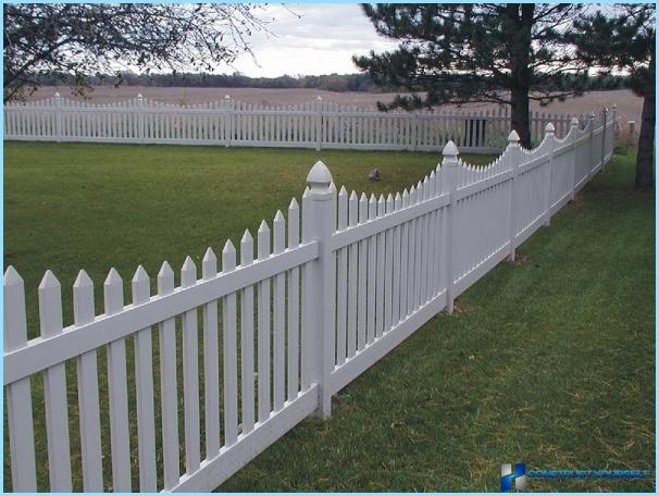 Hvordan man laver et hegn i landet med egne hænder