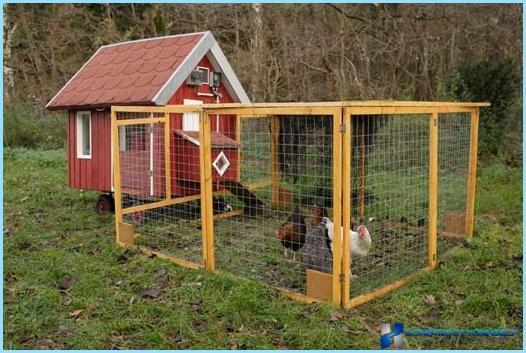 كيفية بناء حظيرة الدجاج بيديك المخططات الصور