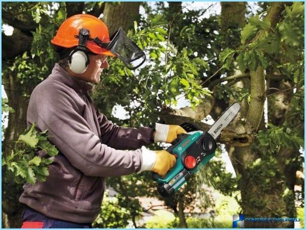 Come scegliere una sega elettrica per la casa e il giardino