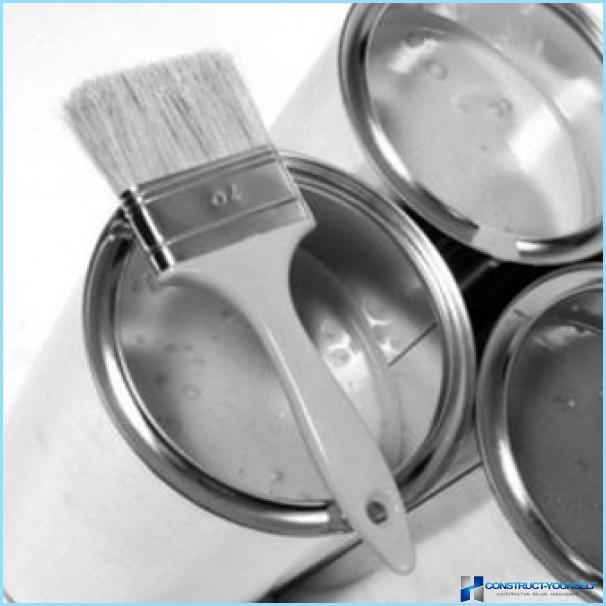Quale vernice è meglio per dipingere la facciata della casa