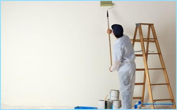 Primer per pareti sotto la carta da parati liquida e tessuto non tessuto fai-da-te