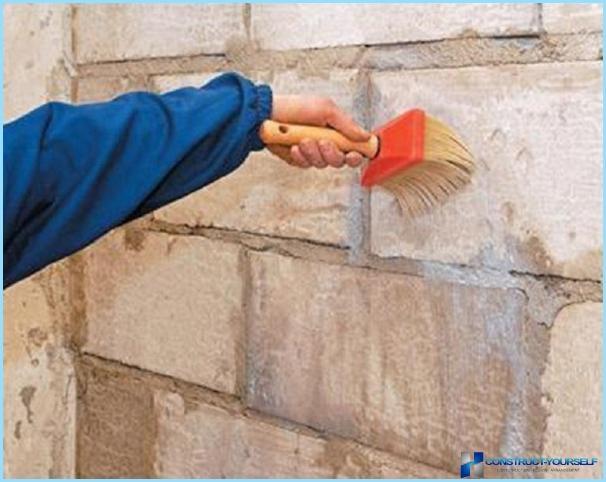 Primer penetrazione profonda: facciata, antisettico