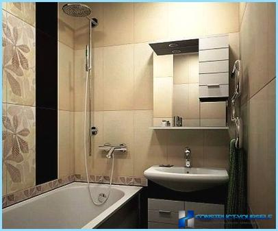 Modern ideas of renovation for the bathrooms
